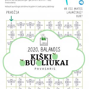laumžirgiai labirintas vaikams užduotis pdf